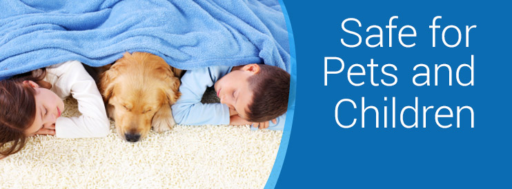 Carpet Cleaning that is Safe for children and pets