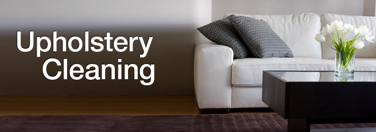 Reviews Heaven S Best Carpet Cleaning Avondale Az