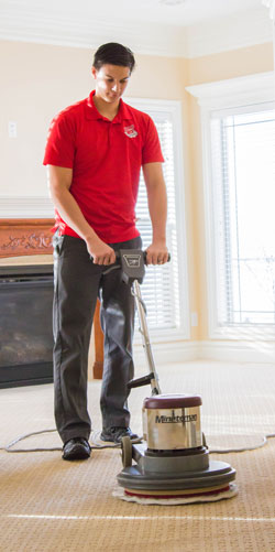 Milwaukee Top Rated Carpet Cleaning Company